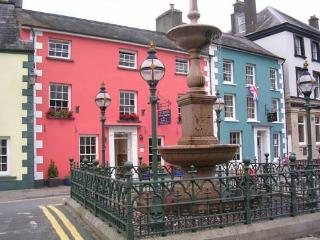 The Drovers Bed and Breakfast, Llandovery