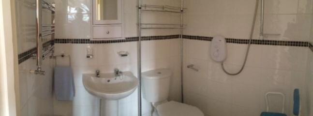 an ample size walk in shower wetroom is en-suite