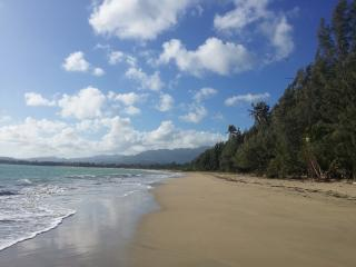 5StarCaribbeanVilla @ St.Regis Bahia Beach Resort