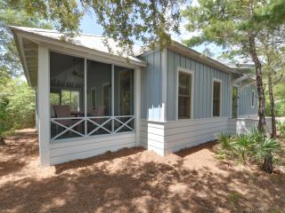 Beautiful 3 bedroom Cottage On 30A Near Seaside!