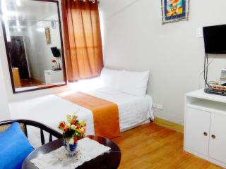 Condo Unit Fully Furnished for rent in Pasig