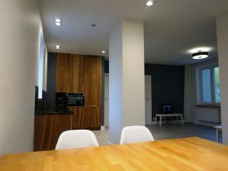 76 m2 Apartment Powisle / Warsaw / Old Town