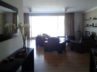 Puerto Madero 2 bedrooms apartment