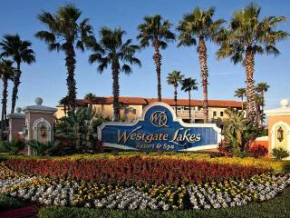 ORLANDO*3BR Deluxe/Sleeps12* WG Lakes Resort & Spa, Orlando