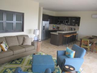 Apartment Tammy - Ocean View, Cabo San Lucas