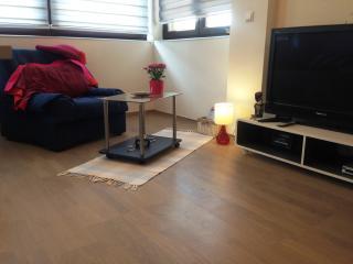 Dea's Modern Studio Apartment Sarajevo Bascarsija