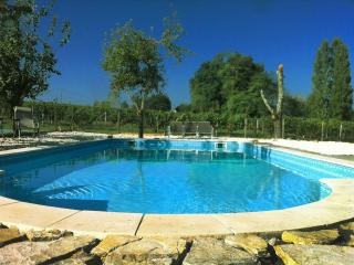 Blaye - Gite on vineyard, exclusive use  of pool
