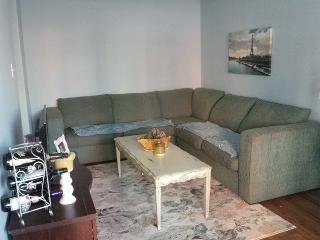 Large 1 Bedroom - Downtown TO, Toronto