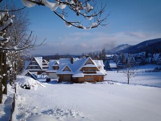 Luxury Apartment for 4 in Zakopane