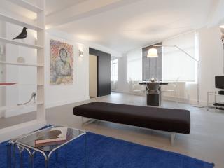 Fully renovated, light & spacious Marais- elevator, Parijs