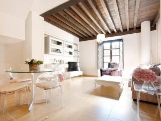 Luxury duplex en el centro de Grx, Granada