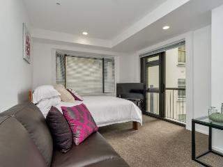 Large studio apartment in central Auckland with views of the CBD, Auckland Central