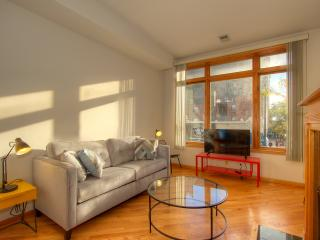 Bright 3BR near lake w/ fireplace, Chicago