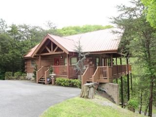 AT HOME IN THE WOODS, Pigeon Forge