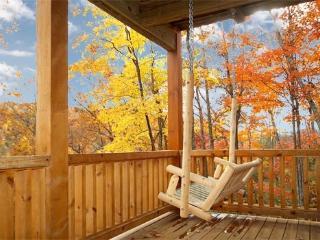 Lower Deck with Log Swing at Settlin' Inn