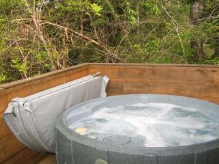 Hot Tub at Lazy Rooster