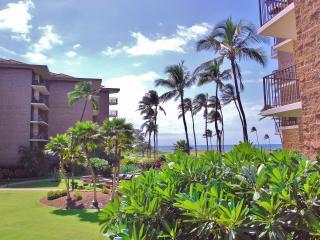 95+/Night 1BD/1BA Oceanfront Hawaiian R & R, Kihei