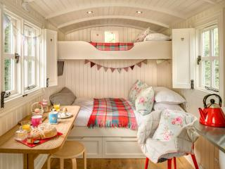 Glamping - Snug Shepherd Hut Spring Dale near Yor, Bishop Wilton