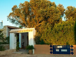 APARTAMENTOS LOS OLIVOS (4 pax), Formentera
