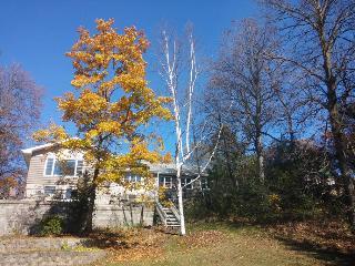 Peaceful Waterfront Home in Brown's Lake, Burlington
