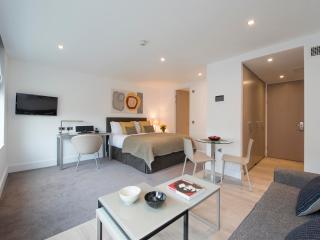 Cozy Studio Apartment in Central London