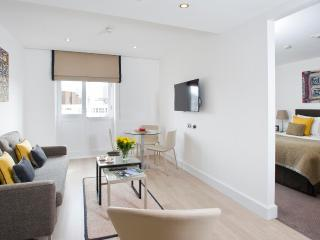 Posh 1 Bedroom Apartment in Central London, Londres
