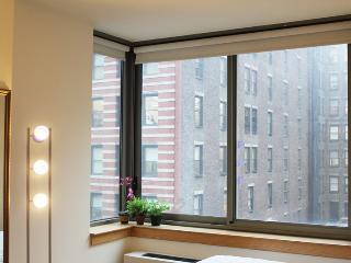 Amazing 2 BDR close to ESB ,  High rise with view., New York City