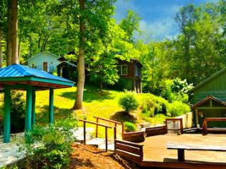 ENTIRE HOUSE Sleeps 7 in 'BLUE CABIN HOME 3', Asheville
