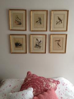 My grandmother's 'little birds'