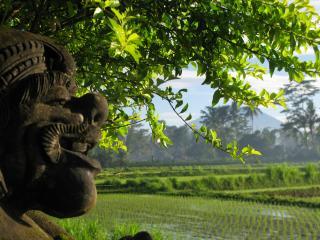 Family quiet 2room WIFI Pool REAL Bali near Ubud