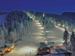 The White house- Ski Chalet