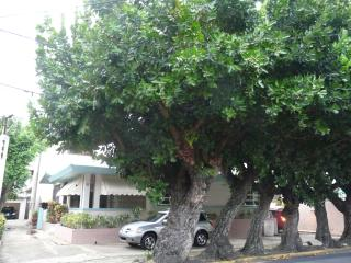Caribe 83, VILLA, WIFI, PARKING, up to 10 guests, San Juan