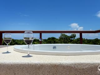 Family Style Corner Penthouse with Jetted Tub on Upper Terrace, Akumal