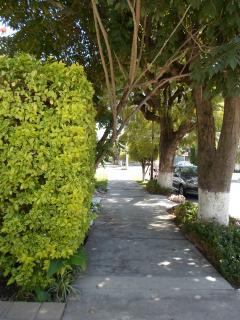 Wide sidewalks in a quiet neighborhood