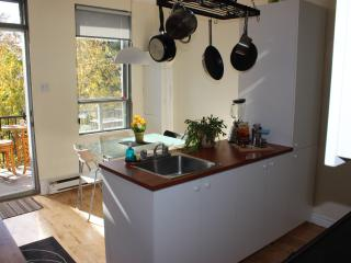 COZY & BRIGHT 1 BEDROOM APT +  TERRACE ON ROSEMONT