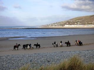 Pony rides on Fairbourne beach-just 2 miles from us