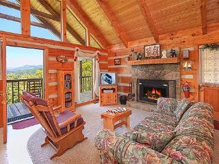 Living Room at Bare Hugs