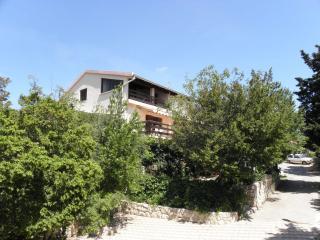 5687 A1 jug(5) - Maslenica