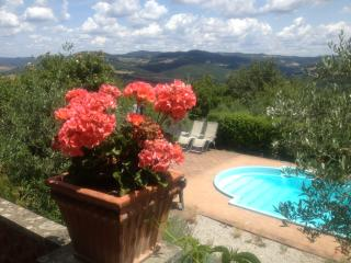 Secluded house. Beautiful grounds. Stunning views., Volterra