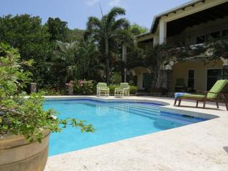 Bay Tree Villa - Luxury villa with private pool, Spring Bay