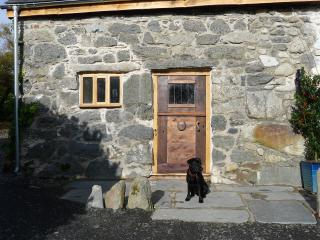 Ty Beic Country Apartments - The Stable, Bala