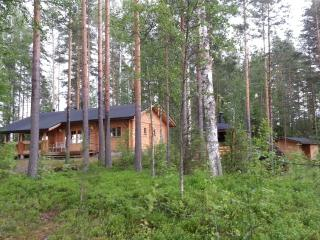 Holiday Cottage by Saimaa Lake,Suomenniemi,Finland