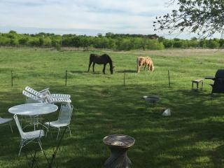 Bridlespur Animal Rescue Ranch