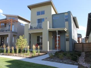 Modern New 5 Bedroom Home, Denver