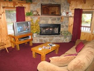 Living Room with Fireplace at Stream Of Love