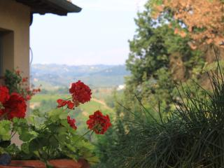 Villa in Tuscany Near Certaldo and the Chianti Region - La Solaia
