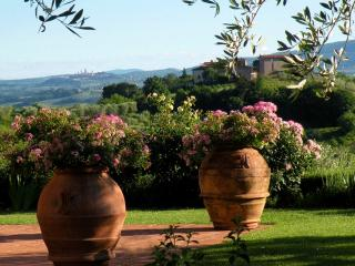 One of Four Apartments on Large Tuscan Estate - Certaldo 2, Lucardo
