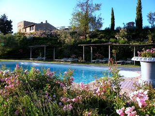 One of Four Apartments on Large Tuscan Estate - Certaldo 4, Lucardo