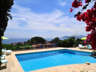 Villa in Cannes with a Private Pool - Villa Croix des Gardes