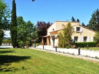Typical Villa in Provence for Large Family - Villa Saze